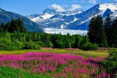 The breathtaking scenery of Juneau, Alaska