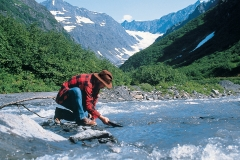 Panning for gold in Alaska
