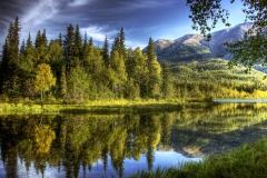 The vast wilderness of Alaska
