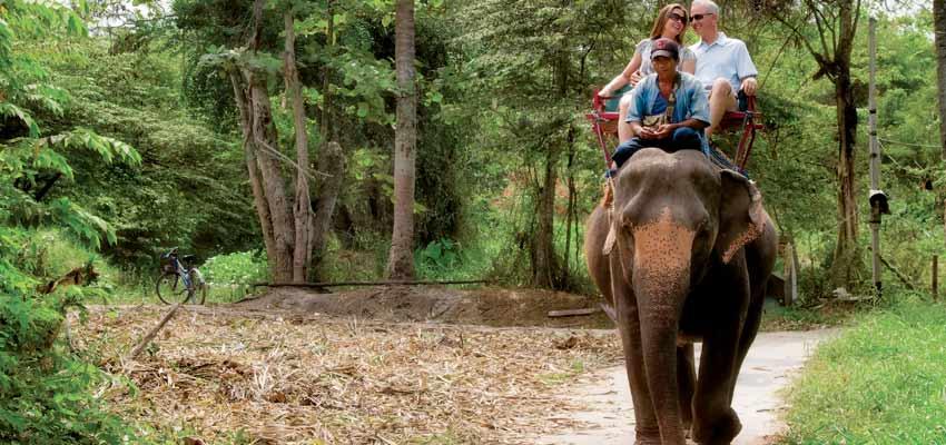 Elephant-back safari excursion in Bali