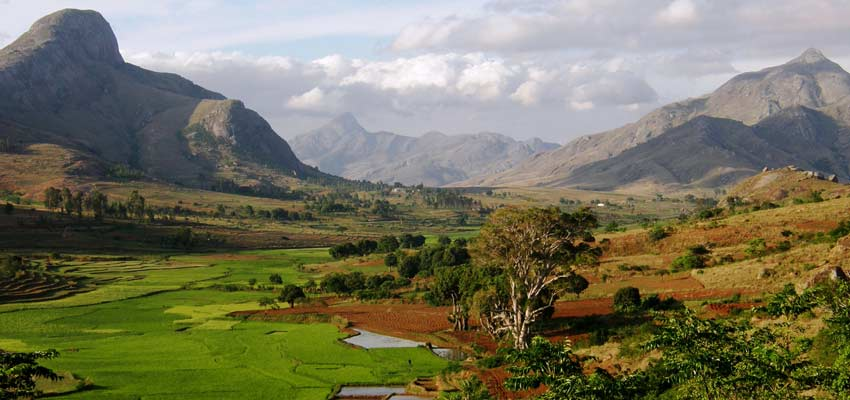 Madagascar's beautiful and verdant nature reserves