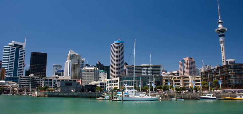 Boats docked in Auckland's scenic harbour