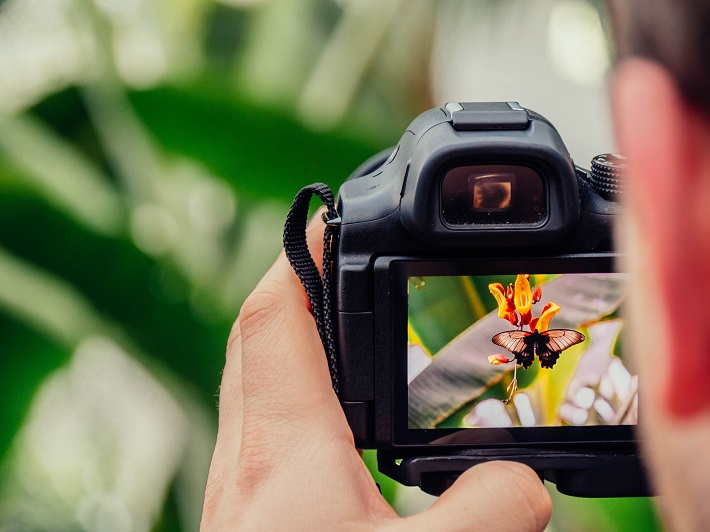 Cruise passenger taking a picture of a butterfly after an on-board photography class