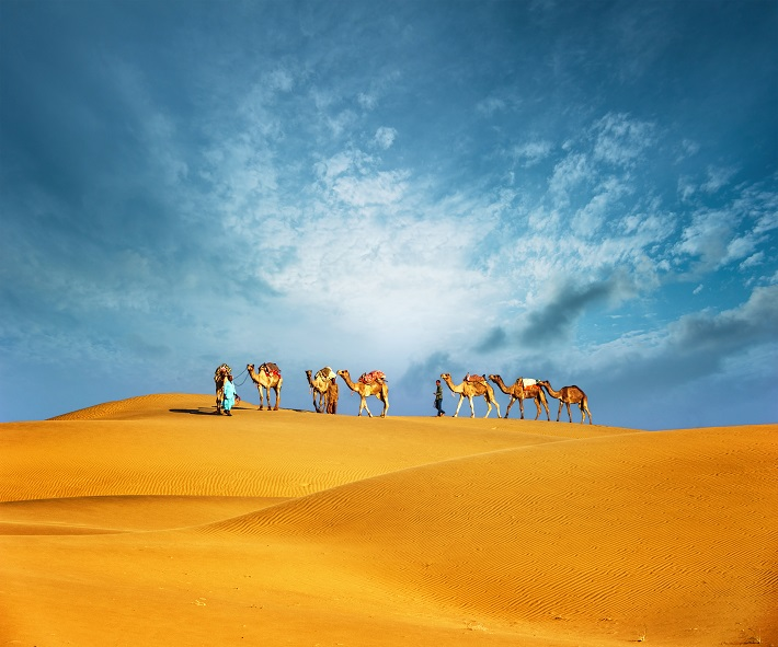 People riding camels on a cruise excursion in the Dubai desert