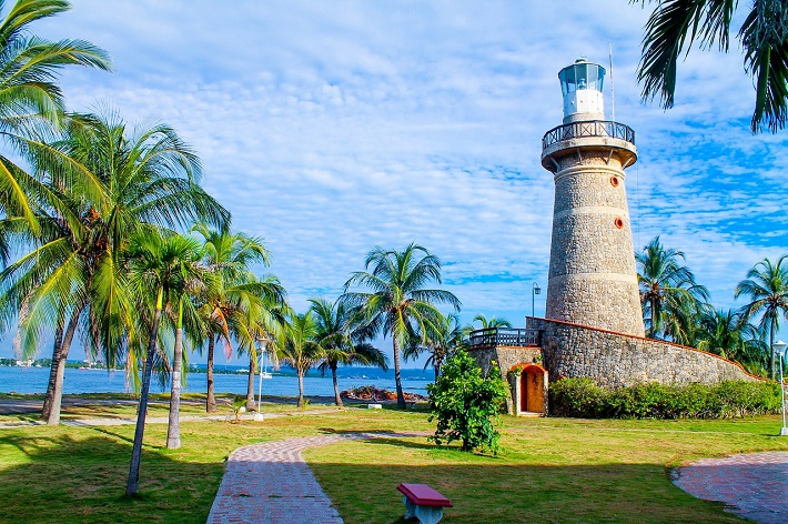 A lighthouse and palm trees on the South American coast