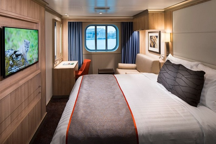 Wildlife documentary on the TV in an Ocean View stateroom on a Holland America Line ship