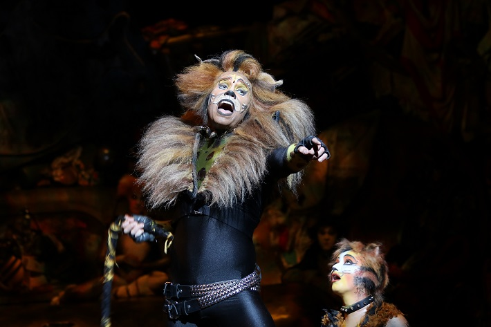 Performers on-stage in a production of Cats on-board Royal Caribbean cruises