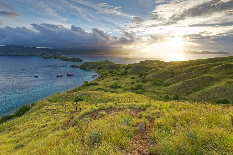 The lush coastline of Komodo National Park in Indonesia
