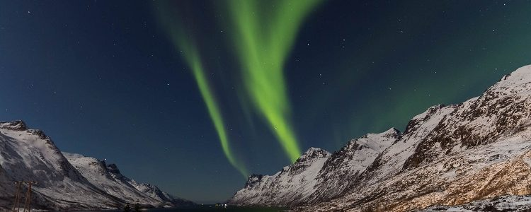 Green streams of aurora borealis dancing over Ersfjorden in Norway