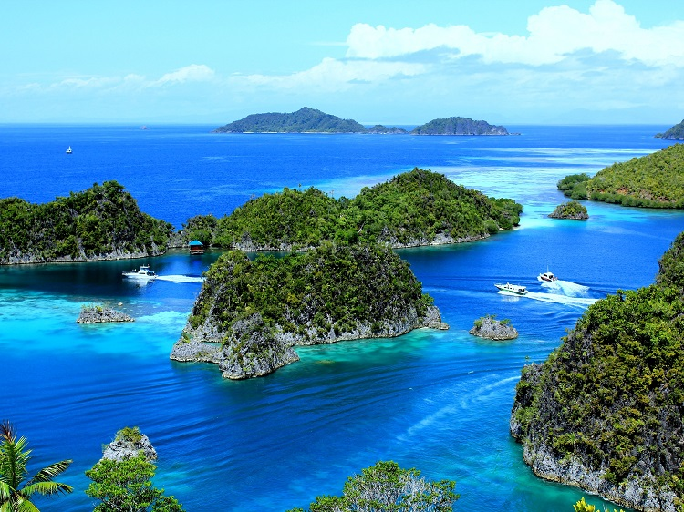 Spice islands of Indonesia