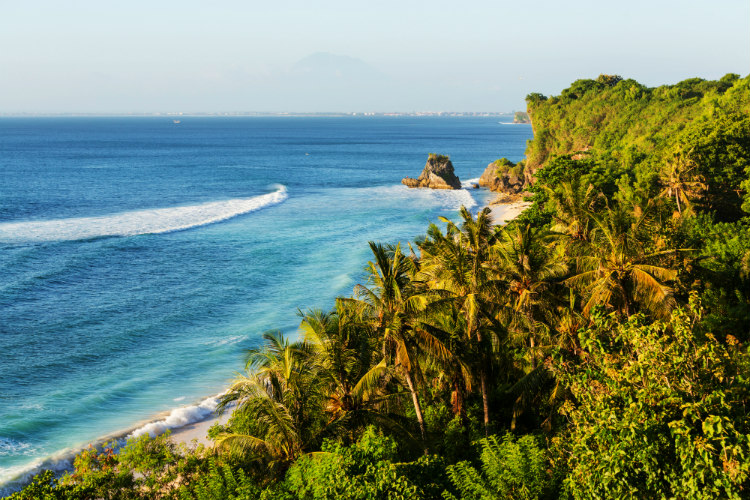 Waves lapping gently onto the shore of a Bali beach bordered by palm trees