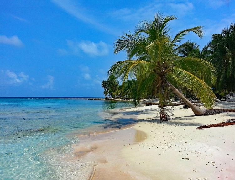 Caribbean Island - Barbados