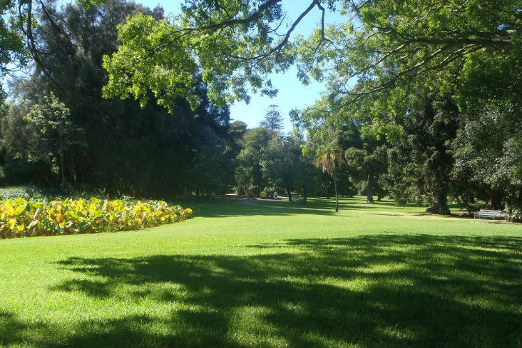 Park in Adelaide - Australia