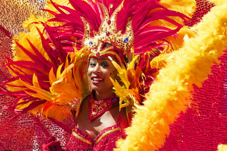 Woman in Carnival - South America