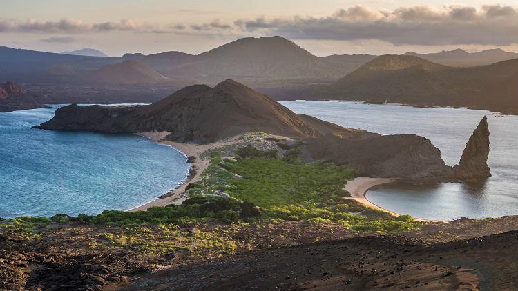 Galapagos - Celebrity Cruises - Flora