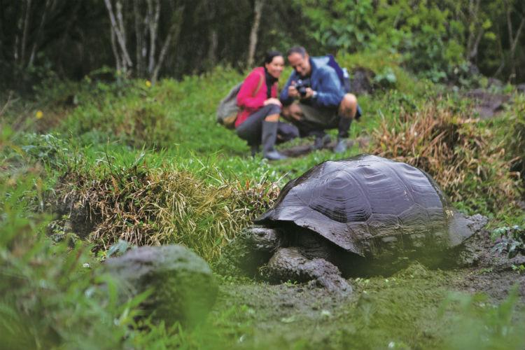 Galapagos - South America