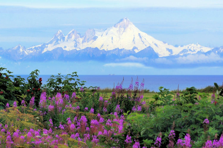 Alaska landscape and mountain