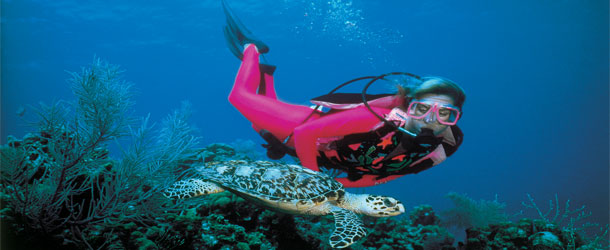 Cruise scuba diving excursions
