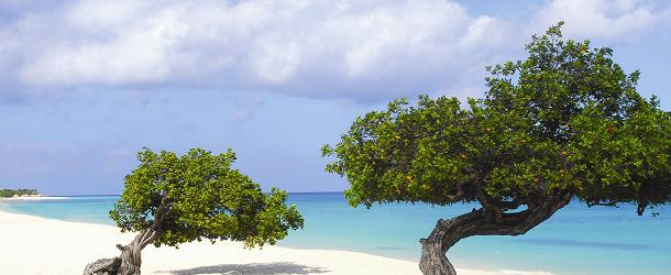 January cruises to Aruba