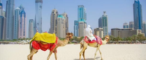 Arabia cruises