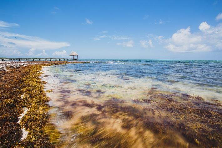 Clear blue sea by a beach in Rpyal Caribbean cruise destination, Mexico