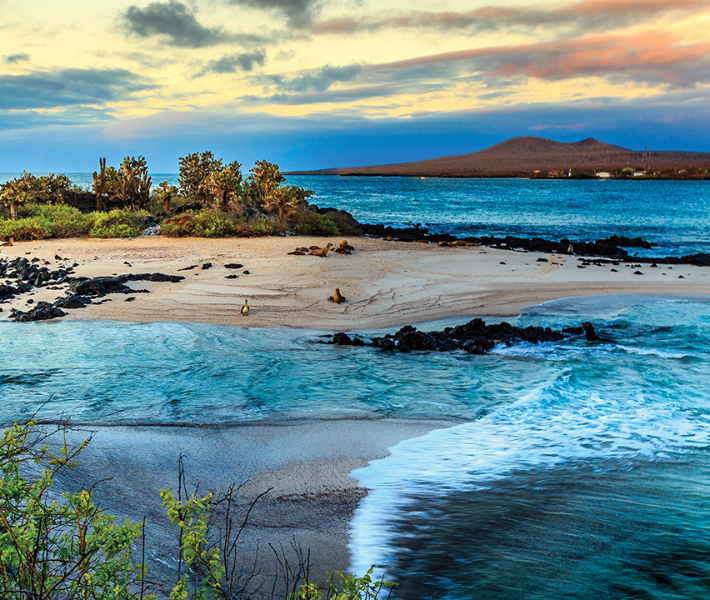 Beach in the Galapagos - stunning destination visited by Celebrity Flora