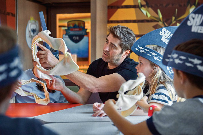 On-board workshops and activities for Sapphire Princess - including activities sponsored by the Discovery channel