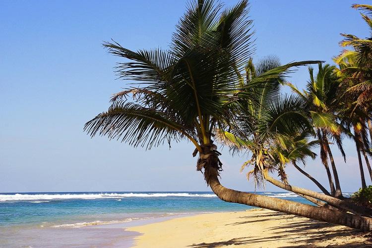 Caribbean beach - MSC Cruises