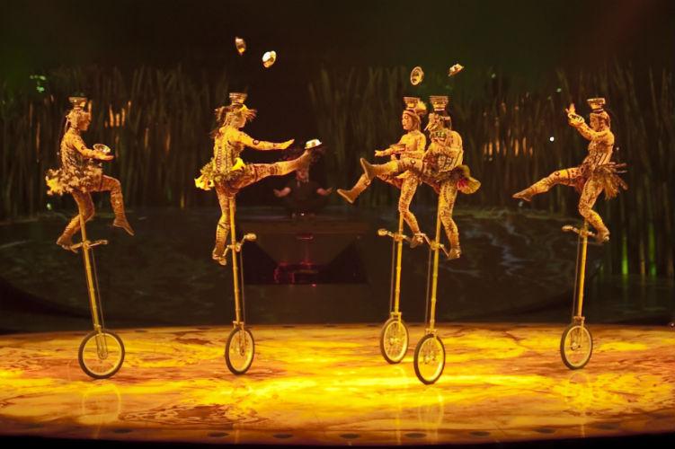 Cirque du Soleil show - Totem